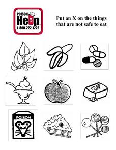 Things That Are Not Safe To Eat Lesson Plan
