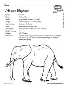 African Elephant Lesson Plan