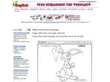 Rabbit Drawing Worksheet