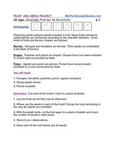 Fruit and Seeds Project Worksheet