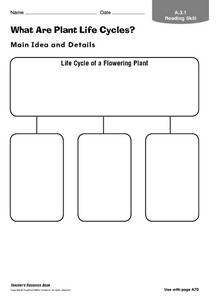 What Are Plant Life Cycles? Worksheet