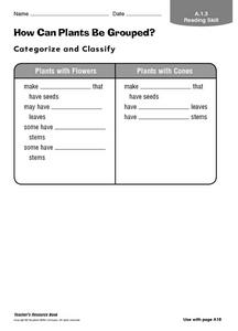 How Can Plants Be Grouped? Worksheet