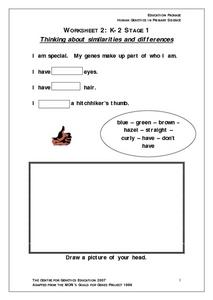Human Genetics-- Thinking About Similarities And Differences Worksheet