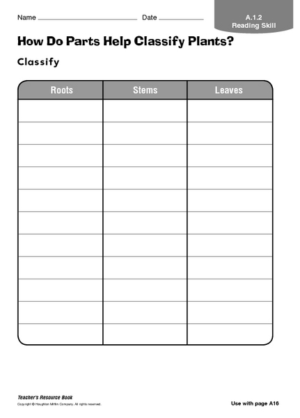 how do parts help classify plants graphic organizer for 1st 3rd grade lesson planet. Black Bedroom Furniture Sets. Home Design Ideas