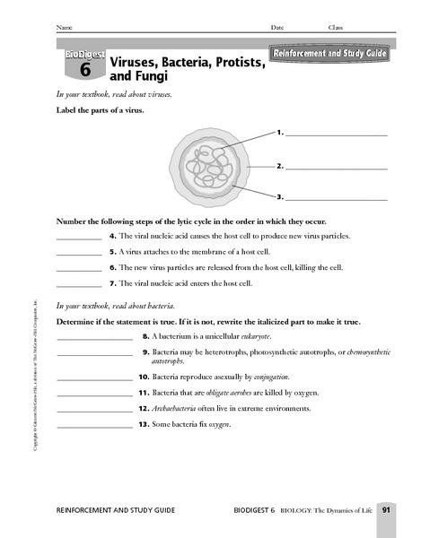 Worksheets Virus And Bacteria Worksheet bacteria worksheet sharebrowse of sharebrowse