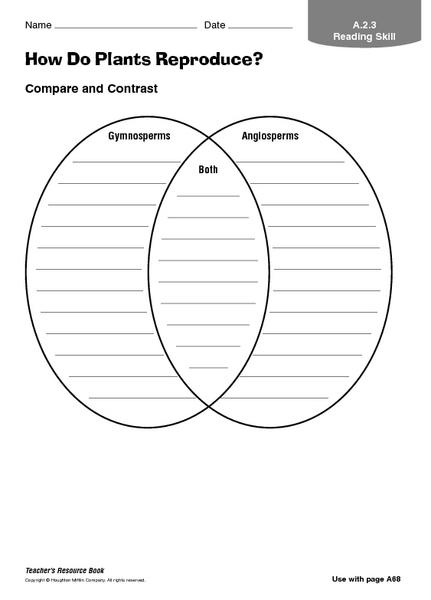 Angiosperm Lesson Plans  U0026 Worksheets