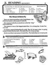 The Monarch Butterfly Lesson Plan