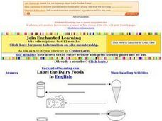 Label the Dairy Foods in English Worksheet