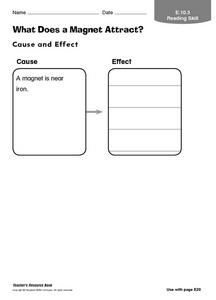 What Does a Magnet Attract? Graphic Organizer