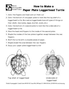 How to Make a Paper Plate Loggerhead Turtle Lesson Plan