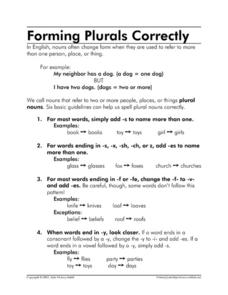 Forming Plurals Correctly Worksheet