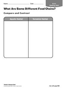 What Are Some Different Food Chains? Worksheet