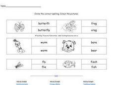 Circle the Correct Spelling. Colour the Pictures Worksheet