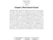 Chapter 3 Word Search Worksheet