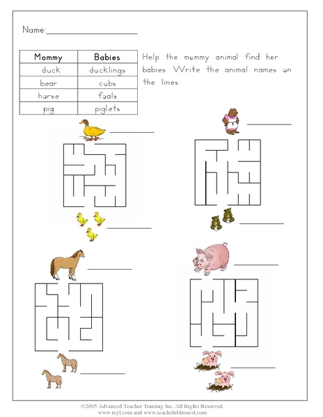 Help the Mommy Animal Find Her Babies Worksheet for 1st