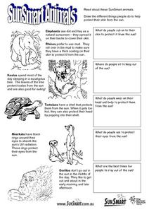 Sun Smart Animals Lesson Plan