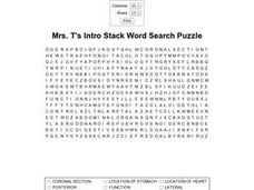 Mrs. T's Intro Stack Word Search Puzzle Worksheet
