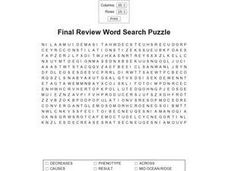 Final Review Word Search Worksheet