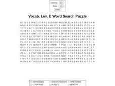 Vocabulary Level E Word Search Puzzle Worksheet