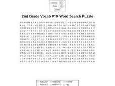 2nd Grade Vocab #10 Word Search Puzzle Worksheet