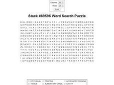 Stack #89596 Word Search Worksheet
