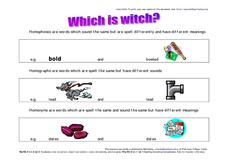 Which Is Witch?  Homophones, Homographs, Homonyms Worksheet