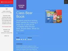 Class Bear Book Lesson Plan