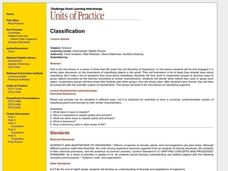 Classification Lesson Plan