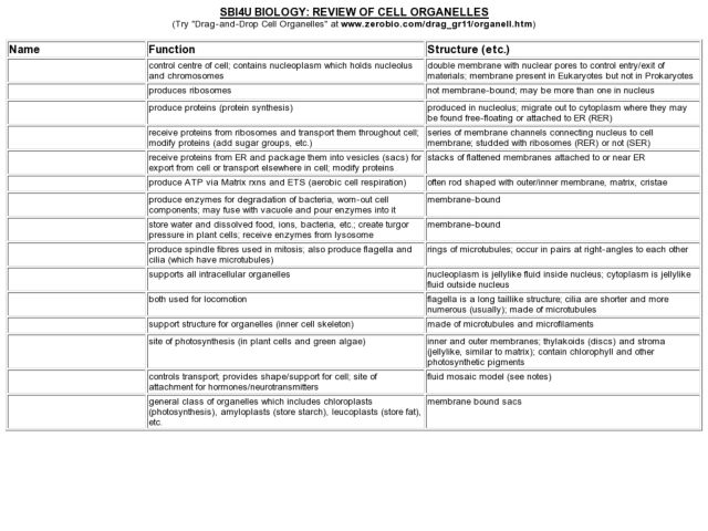 Worksheets Cells And Their Organelles Worksheet Answers of cell organelles worksheet answers sharebrowse collection sharebrowse