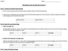 Measuring Lung Volume and Capacity Worksheet