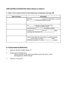Gene Expression Lesson Plans & Worksheets | Lesson Planet