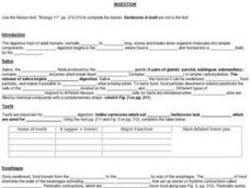 Ingestion Worksheet