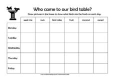 Who Came To Our Bird Table? Lesson Plan
