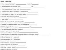 Whale Evaluation Worksheet