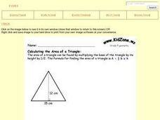 Calculating the Area of a Triangle Worksheet