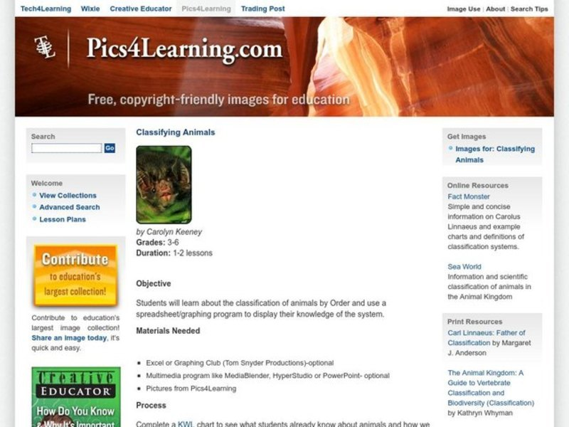 Classifying Animals Lesson Plan