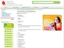 Classifying Dog Breeds Lesson Plan