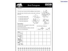 BBC Bird Pictogram- Math Worksheet Worksheet