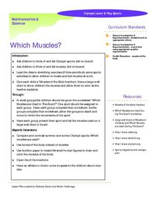 Which Muscles?- Olympic Learn and Play Sports Worksheet