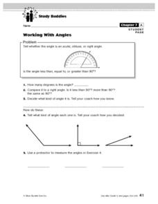Working With Angles Lesson Plan