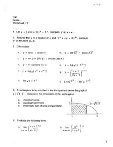 Differentiation and Limits Worksheet