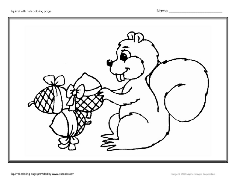 Squirrel With Nuts Coloring Page Worksheet for