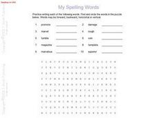 Spelling Words and Word Search Activity Worksheet