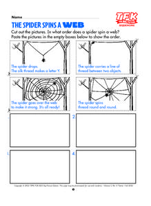 The Spider Spins A Web Lesson Plan