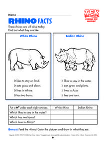 Rhino Facts Lesson Plan