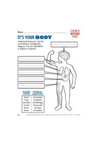 It's Your Body Lesson Plan