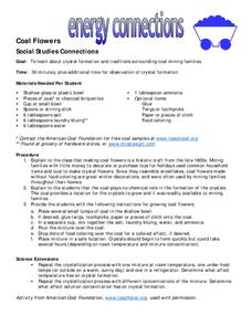 Coal Flowers Lesson Plan