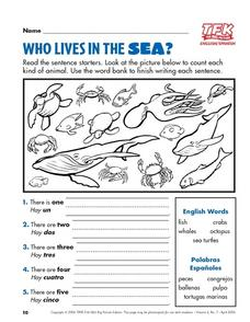 Who Lives In The Sea? Lesson Plan