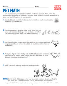 Pet Math Lesson Plan