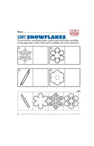 Sort Snowflakes Lesson Plan